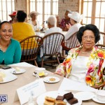 Seniors Tea Bermuda, November 8 2017_4515