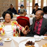 Seniors Tea Bermuda, November 8 2017_4516