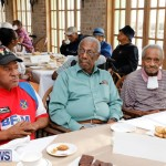 Seniors Tea Bermuda, November 8 2017_4520
