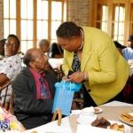Seniors Tea Bermuda, November 8 2017_4528