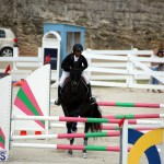 Stardust Stables Jumper Show Bermuda Oct 28 2017 (16)