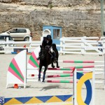 Stardust Stables Jumper Show Bermuda Oct 28 2017 (6)