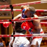 Undefeated Boxing Bermuda, November 11 2017_6609