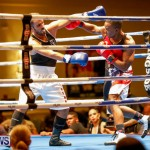Undefeated Boxing Bermuda, November 11 2017_6627