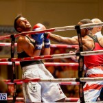 Undefeated Boxing Bermuda, November 11 2017_6656
