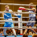 Undefeated Boxing Bermuda, November 11 2017_6671