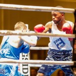 Undefeated Boxing Bermuda, November 11 2017_6673