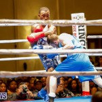 Undefeated Boxing Bermuda, November 11 2017_6730