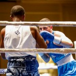 Undefeated Boxing Bermuda, November 11 2017_6755