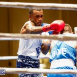 Undefeated Boxing Bermuda, November 11 2017_6775