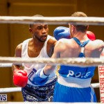 Undefeated Boxing Bermuda, November 11 2017_6805