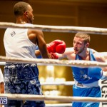 Undefeated Boxing Bermuda, November 11 2017_6814