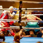 Undefeated Boxing Bermuda, November 11 2017_6824