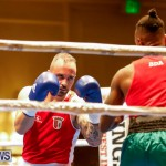 Undefeated Boxing Bermuda, November 11 2017_6829