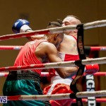 Undefeated Boxing Bermuda, November 11 2017_6878
