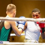 Undefeated Boxing Bermuda, November 11 2017_6942