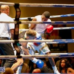Undefeated Boxing Bermuda, November 11 2017_6944