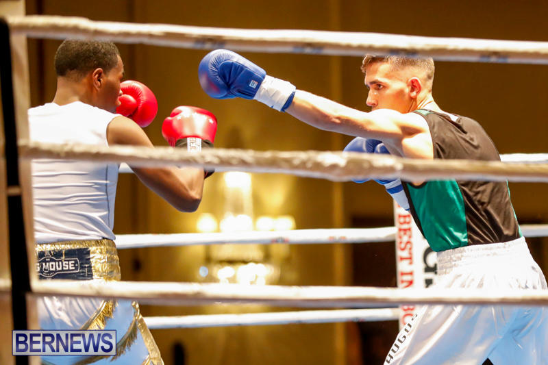 Undefeated-Boxing-Bermuda-November-11-2017_6947