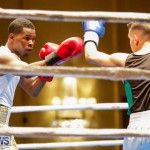 Undefeated Boxing Bermuda, November 11 2017_6949