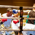 Undefeated Boxing Bermuda, November 11 2017_6990