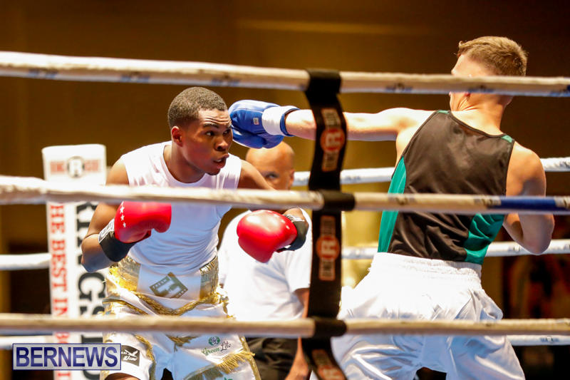 Undefeated-Boxing-Bermuda-November-11-2017_6990