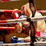 Undefeated Boxing Bermuda, November 11 2017_7212