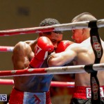 Undefeated Boxing Bermuda, November 11 2017_7250