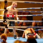 Undefeated Boxing Bermuda, November 11 2017_7344