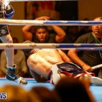 Undefeated Boxing Bermuda, November 11 2017_7345