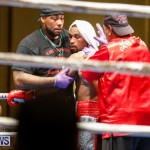 Undefeated Boxing Bermuda, November 11 2017_7363