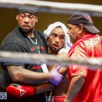 Undefeated Boxing Bermuda, November 11 2017_7366