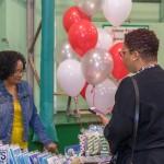 WOMB Market Bermuda Nov 30 2017 (16)