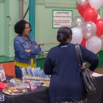 WOMB Market Bermuda Nov 30 2017 (36)