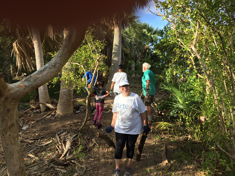 Artex at Trunk Island Bermuda Dec 2017 (2)