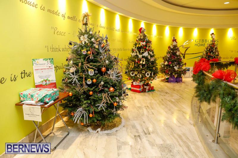 Charity-Christmas-Tree-Event-Washington-Mall-Bermuda-December-11-2017-4449