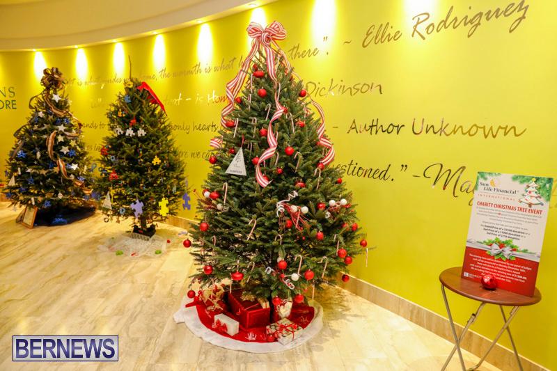 Charity-Christmas-Tree-Event-Washington-Mall-Bermuda-December-11-2017-4456
