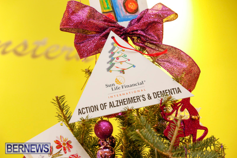 Charity-Christmas-Tree-Event-Washington-Mall-Bermuda-December-11-2017-4469