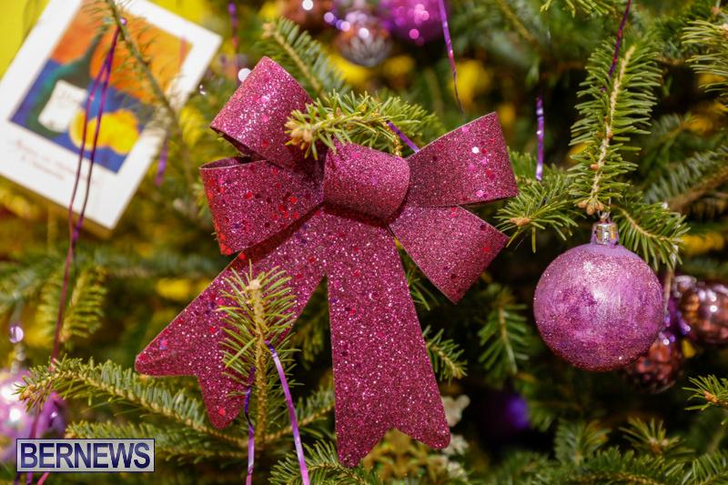 Charity-Christmas-Tree-Event-Washington-Mall-Bermuda-December-11-2017-4472