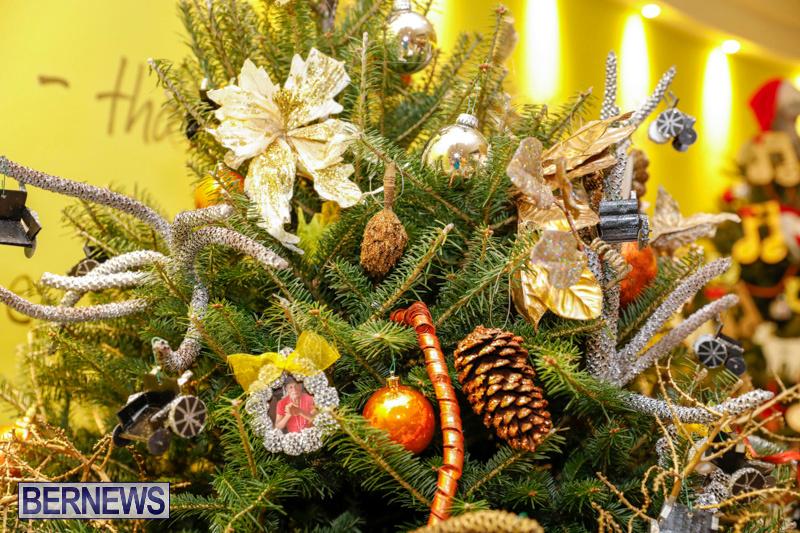 Charity-Christmas-Tree-Event-Washington-Mall-Bermuda-December-11-2017-4483
