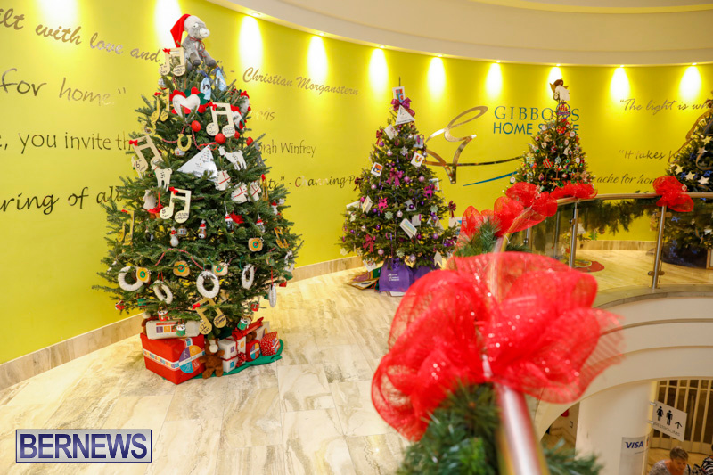 Charity-Christmas-Tree-Event-Washington-Mall-Bermuda-December-11-2017-4485