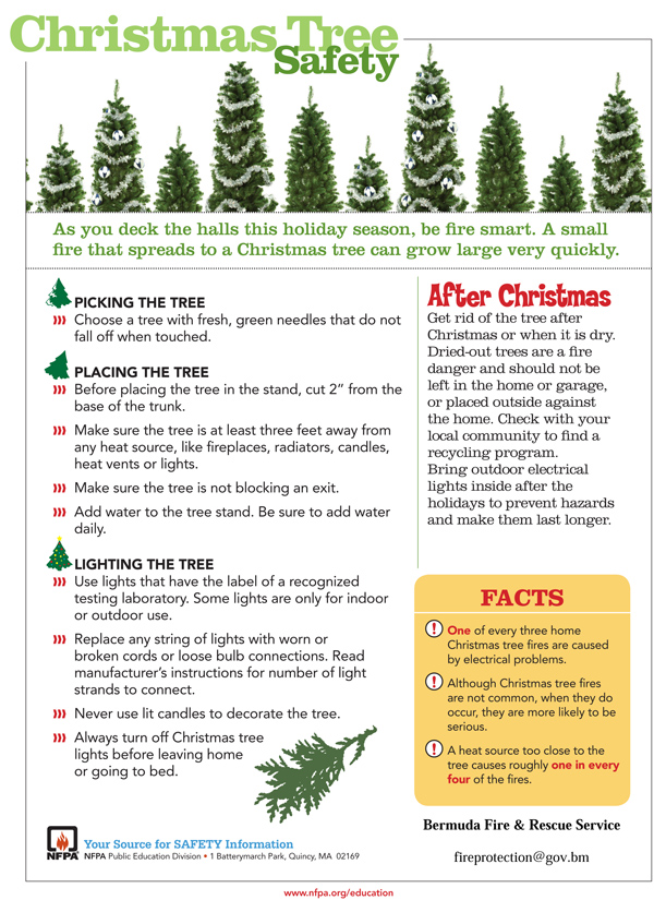 Christmas Tree Safety Tips Bermuda Dec 2017