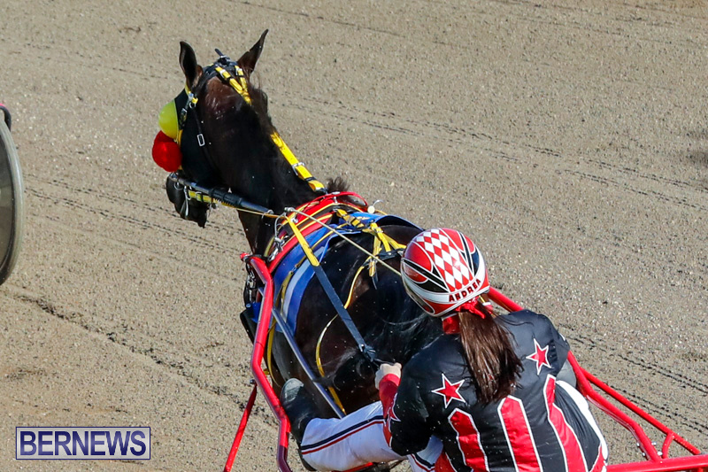 Harness-Pony-Racing-Bermuda-December-17-2017-5362