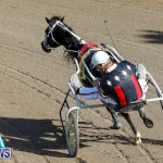 Harness Pony Racing Bermuda, December 17 2017-5365