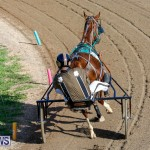 Harness Pony Racing Bermuda, December 17 2017-5367