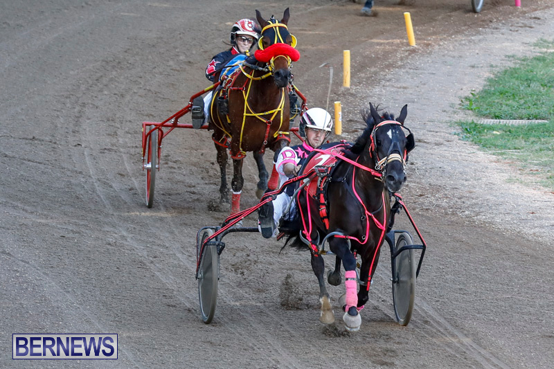 Harness-Pony-Racing-Bermuda-December-17-2017-5382
