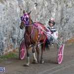 Harness Pony Racing Bermuda, December 17 2017-5420