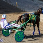 Harness Pony Racing Bermuda, December 17 2017-5423