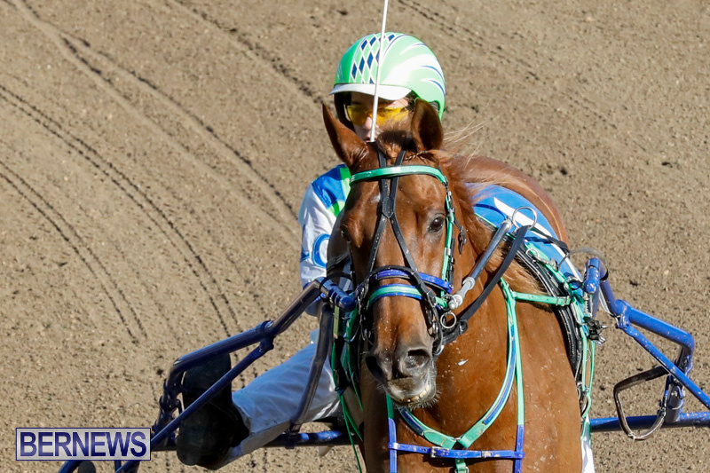 Harness-Pony-Racing-Bermuda-December-17-2017-5424