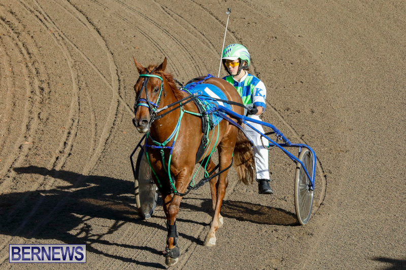 Harness-Pony-Racing-Bermuda-December-17-2017-5426