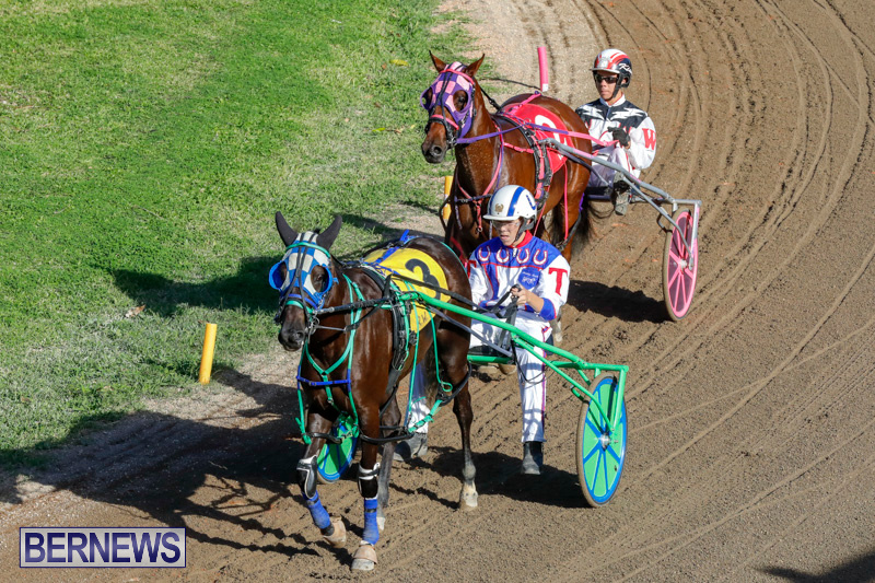 Harness-Pony-Racing-Bermuda-December-17-2017-5445